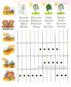"""A imagem """"http://www.loja.jardicentro.pt/images/fichas_tecnicas/jardicentro_rot_miosotis.jpg"""" não pode ser mostrada, porque contém erros."""