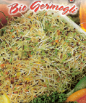 Alfalfas for Sprouting - Biol�gica